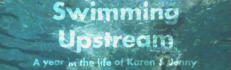 Swimming Upstream large banner